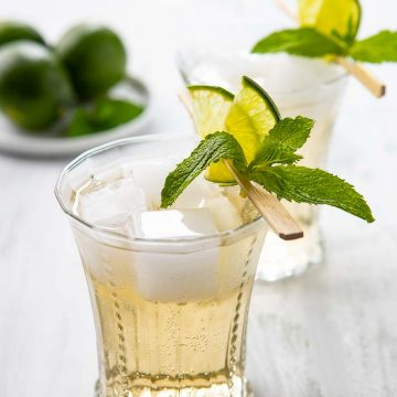 Close up of a Gin Mule in a cocktail glass garnished with a fresh mint sprig and lime slices.